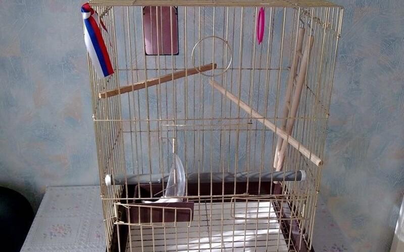 Жерди для попугая