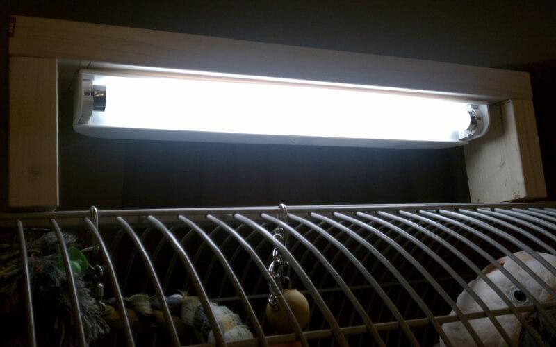 Лампа полноспектральная