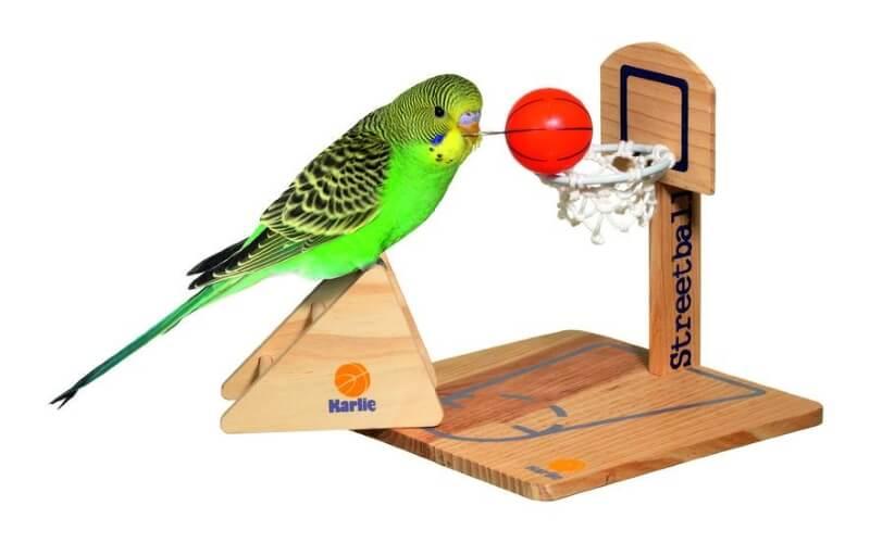 Игрушка для волнистого попугая