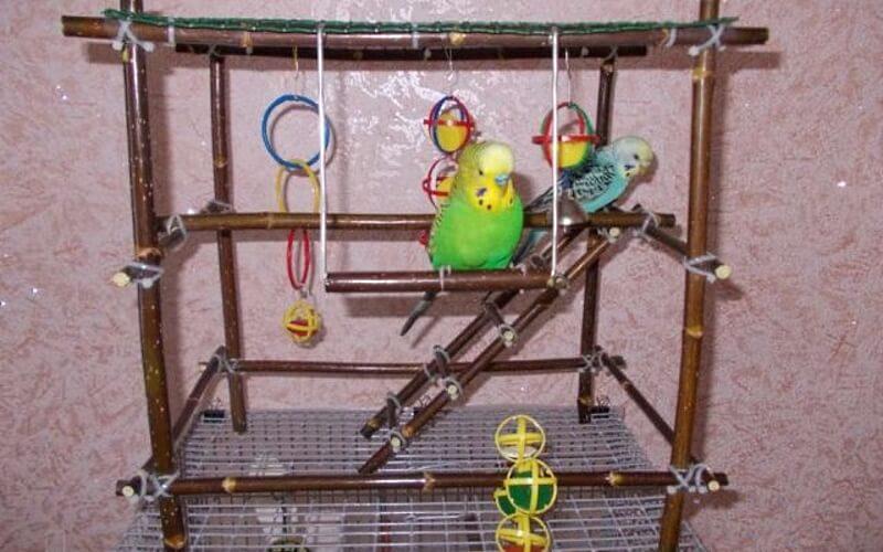 Качели для волнистого попугая, лесенка и игровой стенд