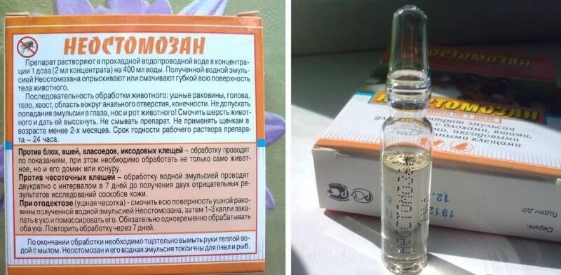 Препарат Неостомазан
